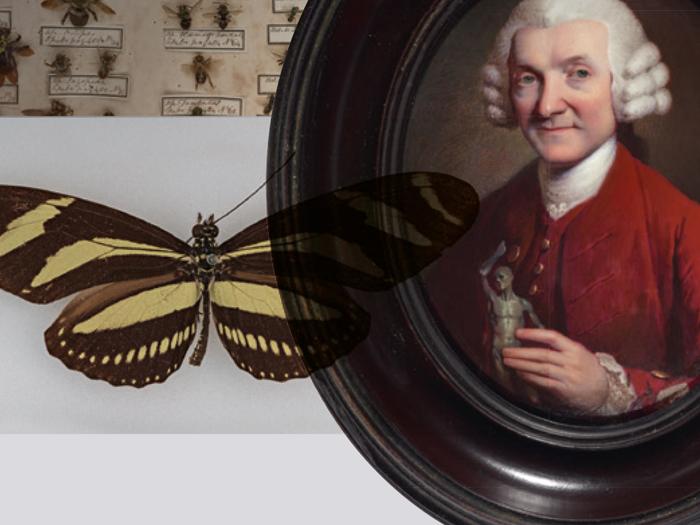 William Hunter Exhibition